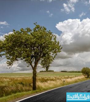 دانلود والپیپر طبیعت - فصل بهار