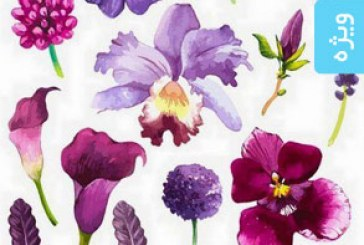 دانلود وکتور های گل و برگ – طرح آبرنگ