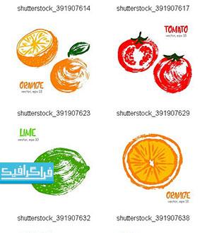 دانلود وکتور نقاشی های میوه - طرح اسکچ