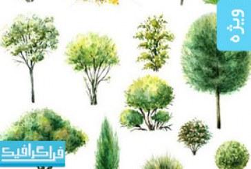 دانلود وکتور های درخت و بوته – طرح آبرنگ