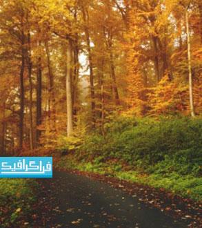 دانلود والپیپر فصل پاییز - شماره 12