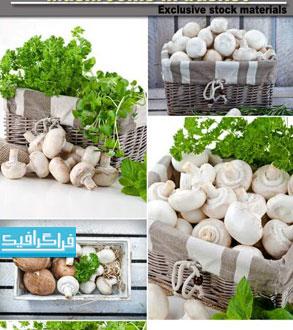 دانلود تصاویر استوک قارچ خوراکی در سبد