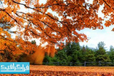 دانلود والپیپر های طبیعت کیفیت 4K – شماره 24