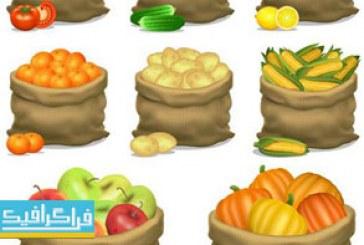 دانلود وکتور های میوه و صیفی جات درون گونی
