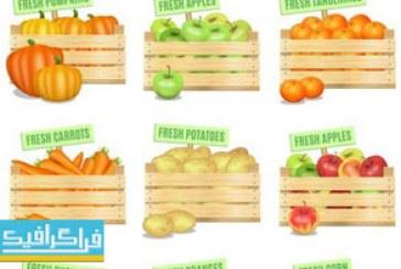 وکتور میوه و صیفی جات درون صندوق چوبی
