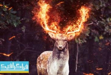 دانلود اکشن فتوشاپ افکت آتش Fire