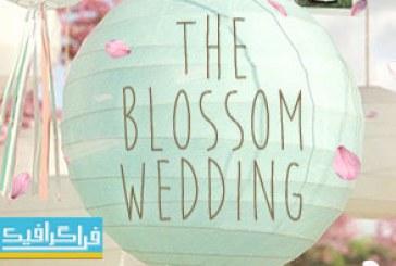 دانلود پروژه افتر افکت آلبوم عکس عروسی شکوفه