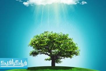 تصویر استوک چمن زار و درخت با رنگین کمان ابری – رایگان