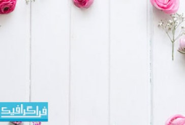 تصویر استوک گل های صورتی روی پس زمینه چوبی – رایگان