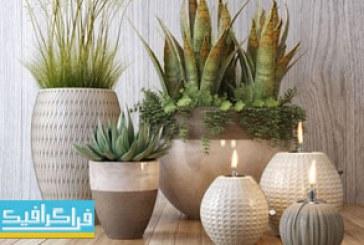 دانلود مدل های سه بعدی گیاه و گلدان