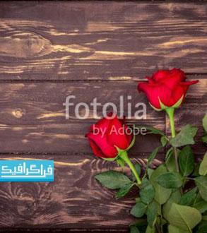 تصویر استوک گل های رز روی پس زمینه چوبی