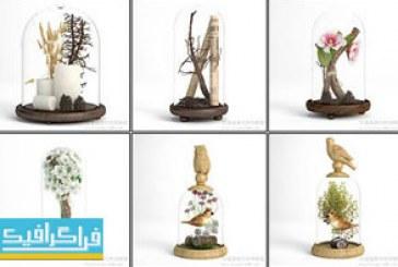 دانلود مدل سه بعدی مجسمه های تزئینی تراریوم کوچک