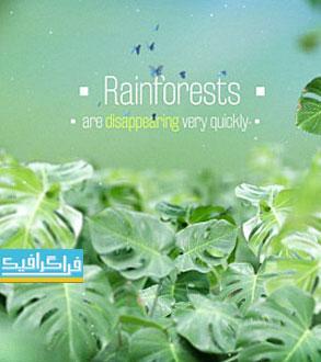 دانلود پروژه افتر افکت انیمیشن های متنی - جنگل بارانی