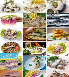 دانلود تصاویر استوک غذا های دریایی و ماهی