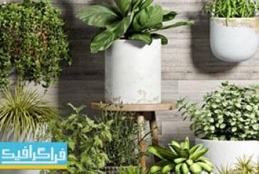 دانلود مدل سه بعدی گیاه و گلدان – شماره 2