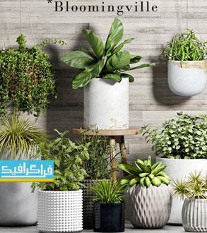 دانلود مدل سه بعدی گیاه و گلدان - شماره 2