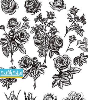 دانلود وکتور طرح های گل رز - ترسیمی