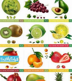 دانلود وکتور طرح های واقعی میوه - شماره 4