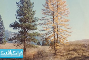 دانلود تصاویر استوک طبیعت افکت قدیمی – رایگان
