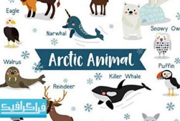 دانلود وکتور حیوانات قطبی – رایگان