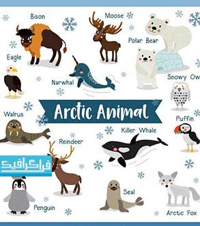 دانلود وکتور حیوانات قطبی - رایگان