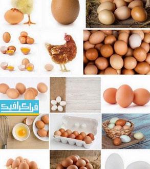 دانلود تصاویر استوک تخم مرغ دو زرده