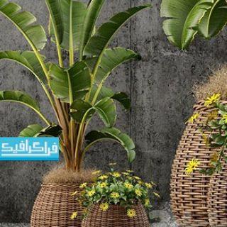 دانلود مدل سه بعدی گیاه و گلدان - شماره 3