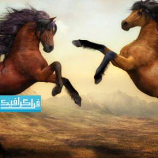 دانلود والپیپر دسکتاپ نقاشی 2 اسب زیبا