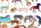 دانلود تصاویر کلیپ آرت حیوانات - طرح آبرنگ